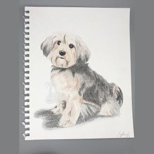 Terrier-Pup